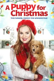A Puppy for Christmas 2016